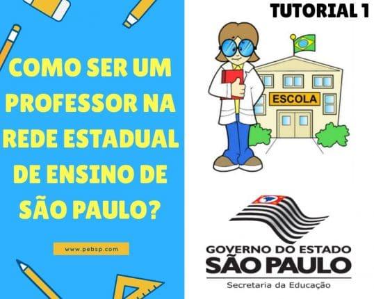 Como ser Um Professor do Estado